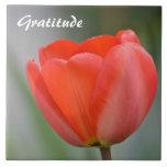 Gratitud floral del tulipán rojo azulejos cerámicos