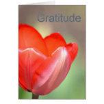 Gratitud floral del tulipán rojo tarjeton