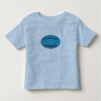 Gratitude 100% Guaranteed Toddler T-shirt