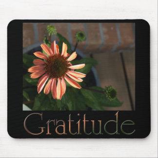 Gratitude 3 mouse pad