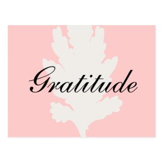 Gratitude White Pink Leaf Postcard