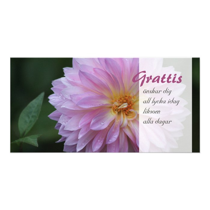 Grattis Önskar dig all lycka idag CC0768 Photo Card