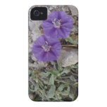 Gravel Flowers in Del Rio iPhone 4 Covers