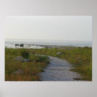 Gravel Path to Lake Poster