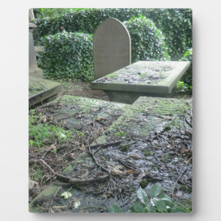 Graves at Haworth Churchyard in Yorkshire Display Plaques