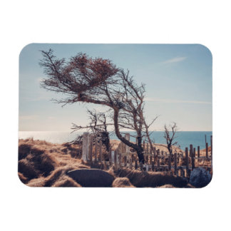 Graveyard by the sea magnet