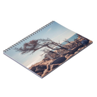 Graveyard by the sea note book