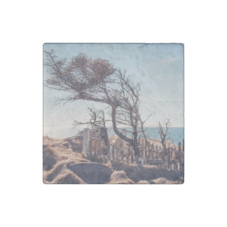 Graveyard by the sea stone magnet