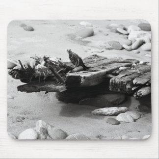 Graveyard Coast Shipwreck Remains Mouse Pad
