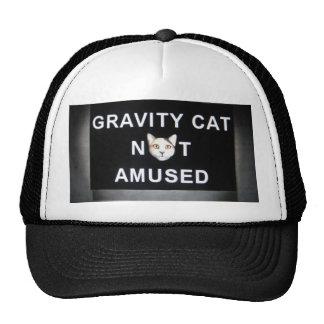 gravity cat not amused trucker hat