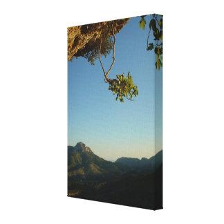 Gravity Gallery Wrap Canvas