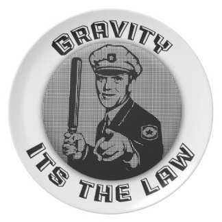 Gravity Its The Law Melamine Plate