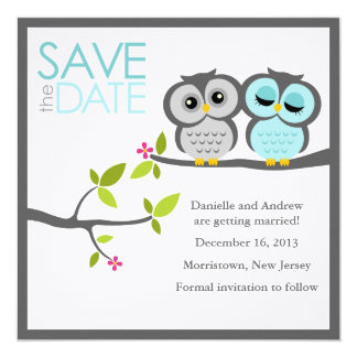 Gray and Aqua Owls Wedding Save the Date Card