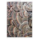Gray and Burgundy Fungi Ripples Greeting Card