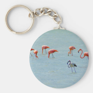 Gray and pink flamingos flock in lake keychain
