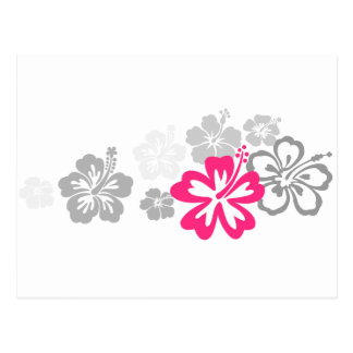 Gray and Pink Hibiscus designs Post Card