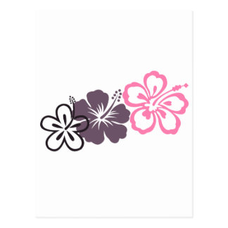 gray and pink hibiscus Hawaiian  theme Post Card