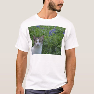 Gray and white cat in field of blue bonnets T-Shirt