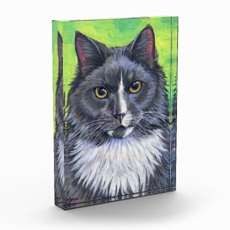 Gray and White Longhaired Tuxedo Cat Acrylic Block