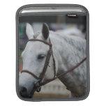 Gray Appaloosa Horse iPad Sleeve