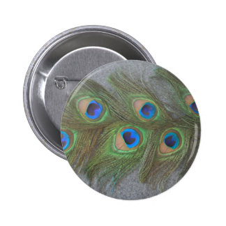 Gray Background Peacock Feathers Pinback Button