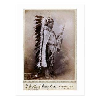 Gray Bear 1880 Postcard