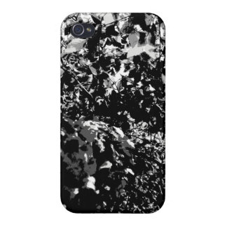 Gray Birch Tree Case For iPhone 4