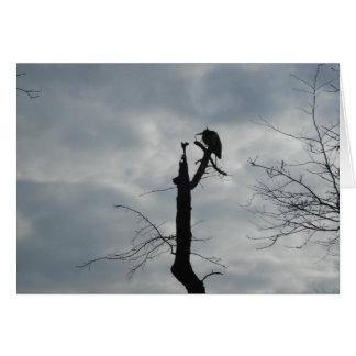Gray Bird Silhouette Greeting Card