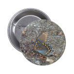 Gray Blue and orange butterfly camo Pins