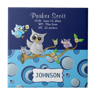 Gray & Blue Baby Owl | Birth Information Tile