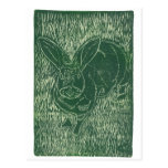 Gray Bunny Rabbit In The Grass Post Cards