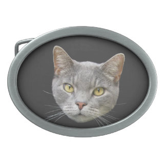 Gray Cat Oval Belt Buckle