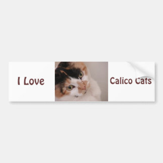 Gray Cat Bumper Sticker