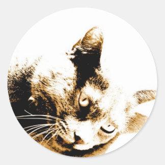 Gray Cat Classic Round Sticker