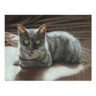Gray Cat Green Eyes on Bed Postcard KMCoriginals