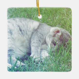 Gray Cat Lover Your Photo Christmas Ornament