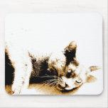Gray cat mousepad