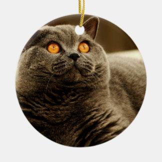 Gray Cat Ornament
