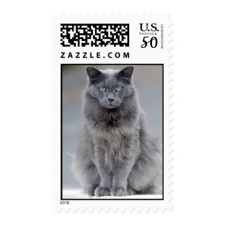 Gray Cat Postage Stamp No. 2