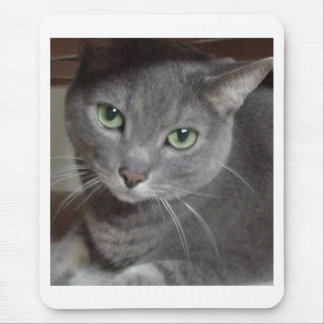 Gray Cat Russian Blue Mouse Pad