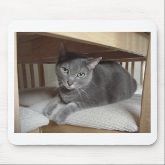 Gray Cat/Russian Blue Mouse Pad