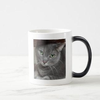 Gray Cat Russian Blue Mugs