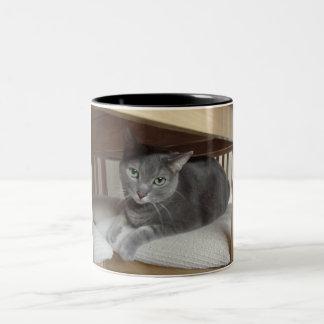 Gray Cat/Russian Blue Coffee Mug