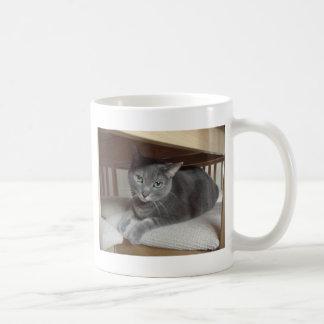 Gray Cat Russian Blue Coffee Mugs