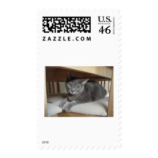 Gray Cat Russian Blue Stamp