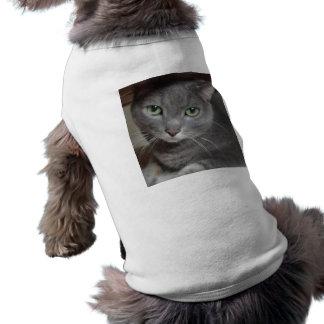 Gray Cat Russian Blue Shirt