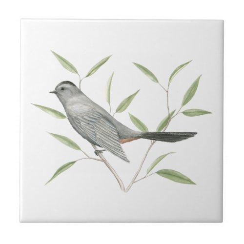 Gray Catbird Bird Art Ceramic Tile