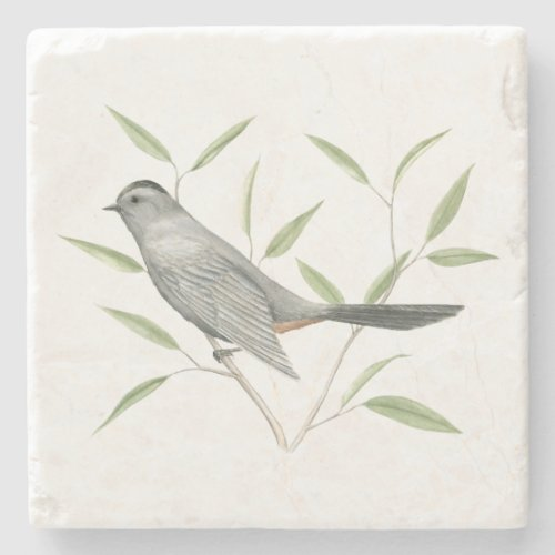 Gray Catbird Bird Art Stone Coaster