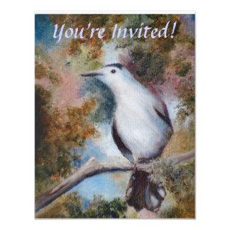 Gray Catbird Invite