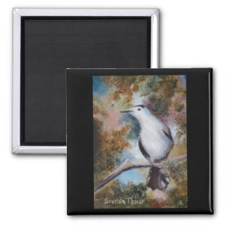 Gray Catbird Magnet